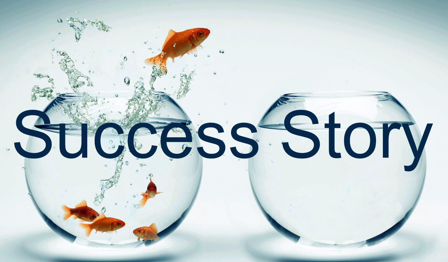 Success-Stories-for-2016